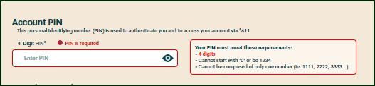 Account PIN.png